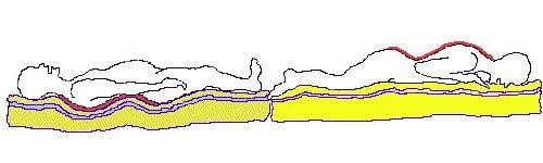 spine2b.jpg (19076 bytes)